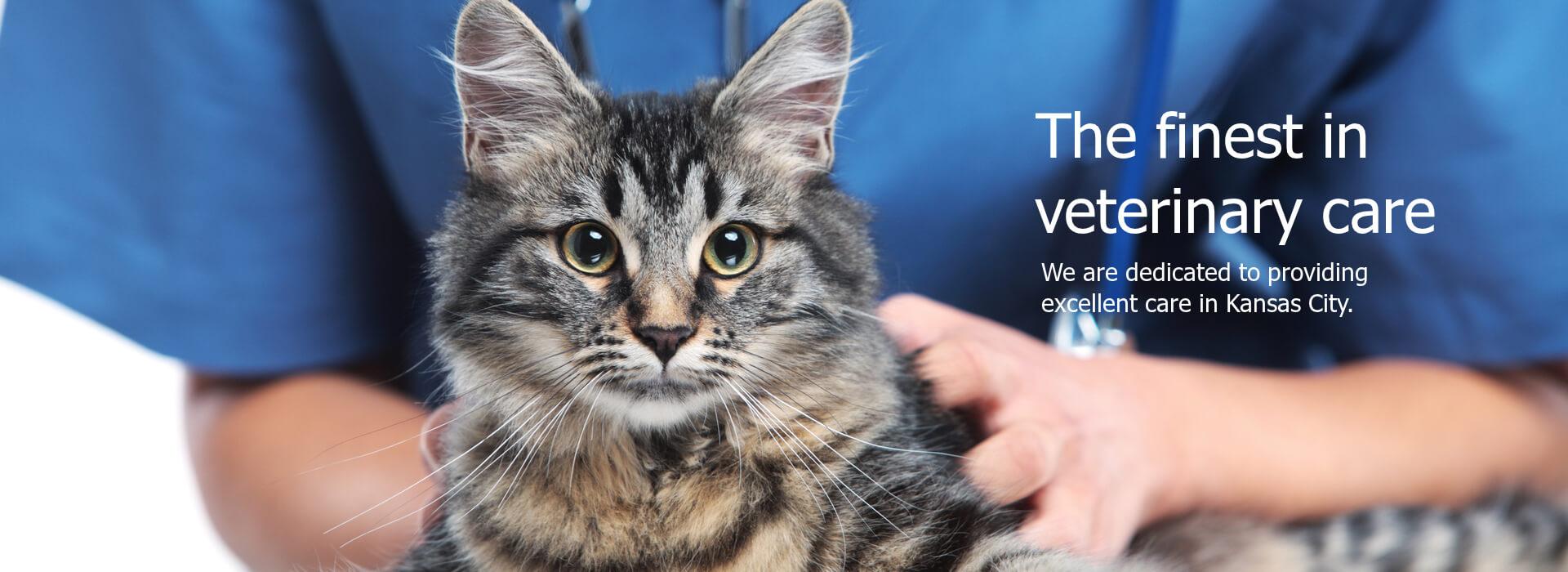 emergency pet services kansas city