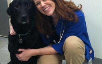 Please help us welcome our new veterinarian, Dr. Sarah Wissmann!