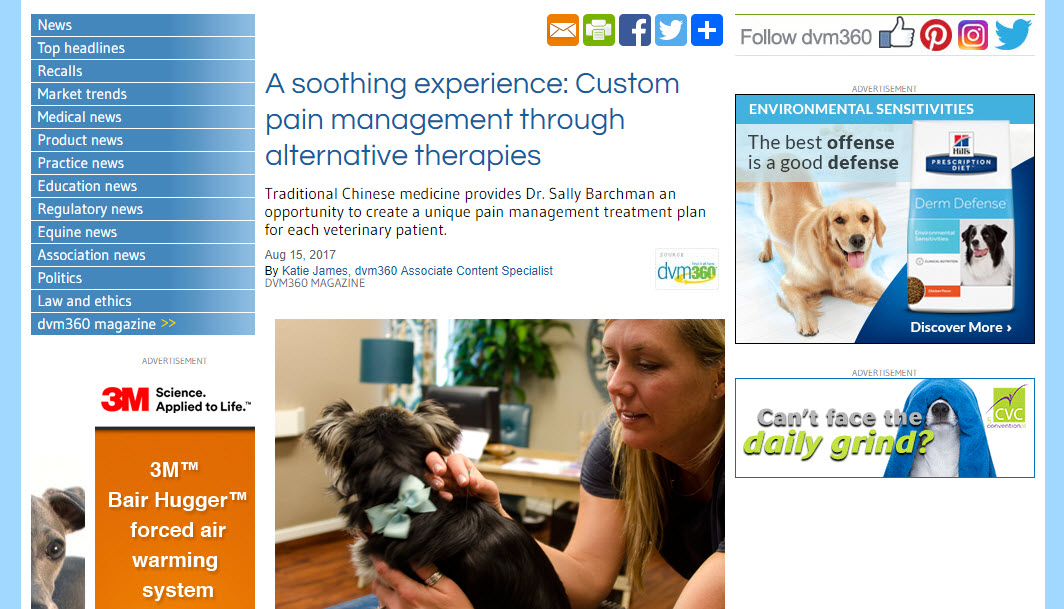 A Soothing Experience: Custom Pain Management Through Alternative Therapies